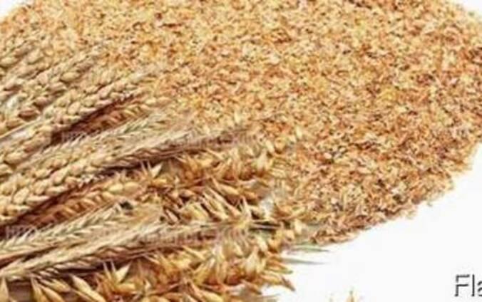 Пшеница 3,4,5 класса Казахстан