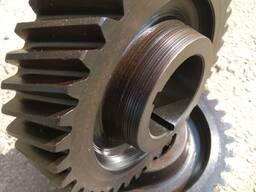 Gearwheel, gear, staft gear, toothed crown, gear box - фото 2