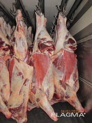 Мясо, говядина, утка