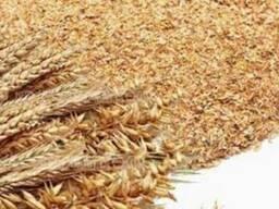 Отруби пшеничные пушитсые