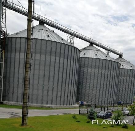 Продаем пшеницу 3, 4, 5 класс- Казахстан