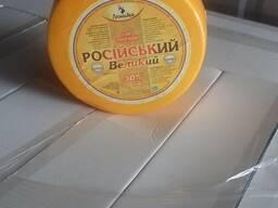 Сыр - фото 4